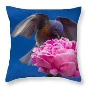 Count Bluebird Throw Pillow by Jean Noren