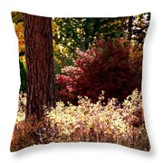 Country Color 28 Throw Pillow