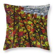 Country Colours Throw Pillow