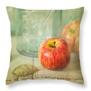 Country Comfort Throw Pillow by Amy Weiss