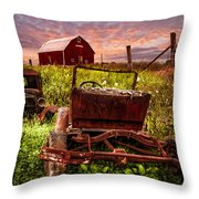 Country Cousins Throw Pillow