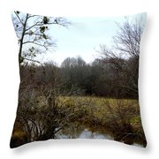 Country Creek Throw Pillow