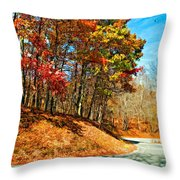 Country Curves And Vultures Paint Throw Pillow
