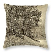 Country Curves And Vultures Sepia          Throw Pillow
