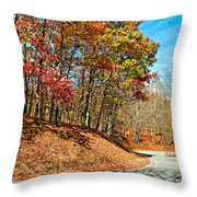 Country Curves And Vultures Throw Pillow
