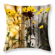 Country Daisy Throw Pillow
