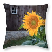 Country Flower Square Throw Pillow