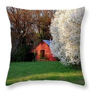 Country Gem Throw Pillow