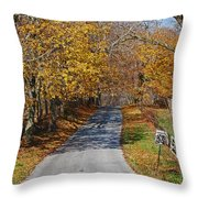 Country Graffiti Throw Pillow