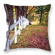 Country Lane Fall Foliage Vermont Throw Pillow
