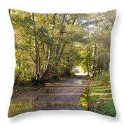 Country Lane In Autumn 3 Throw Pillow