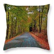 Country Lane In Autumn Throw Pillow