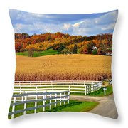 Country Lane Throw Pillow by Frozen in Time Fine Art Photography