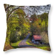 Country Lanes Throw Pillow