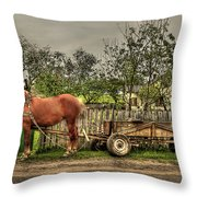 Country Life Throw Pillow by Evelina Kremsdorf