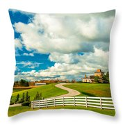 Country Living Painted Throw Pillow