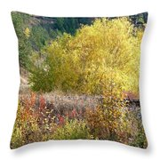 Country Railway Crossing Throw Pillow