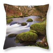 Country River Scene Wales Throw Pillow