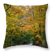 Country Road Fall Vermont Throw Pillow