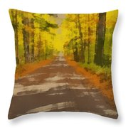 Country Road In Autumn Throw Pillow