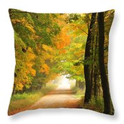 Country Road In Autumn Throw Pillow by Terri Gostola