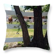 Country Setting Throw Pillow