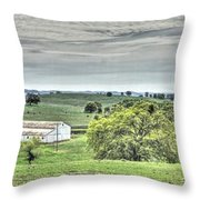 Country Style Throw Pillow