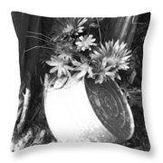 Country Summer - Bw 02 Throw Pillow