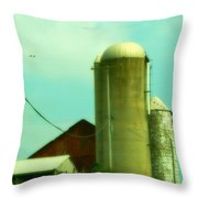 Country Summer Throw Pillow