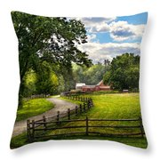 Country - The Pasture  Throw Pillow