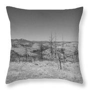 Countryside 2 Throw Pillow