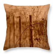 Countryside Fence Throw Pillow