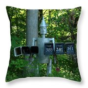 Countryside Mailbox #11 Throw Pillow