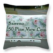 Countryside Mailbox #22 Throw Pillow