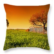 Countryside Orchard Landscape At Sunset. Spring Time Throw Pillow