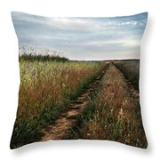 Countryside Tracks Throw Pillow