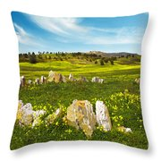Countryside With Stones Throw Pillow