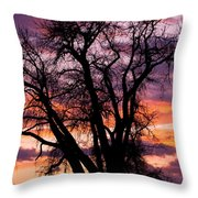 County Sunset Throw Pillow