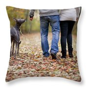 Couple And Dog Autumn Or Fall Throw Pillow