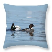 Courting Common Golden Eyes Throw Pillow