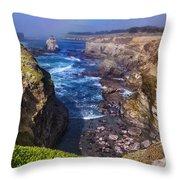 Cove On The Mendocino Coast Throw Pillow