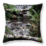 Covell Creek 1 Throw Pillow