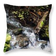 Covell Creek 4 Throw Pillow