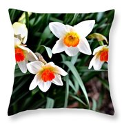 Covenant Daffodils Throw Pillow
