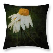 Covered Throw Pillow