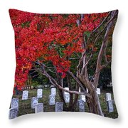 Covered In Fall Colors Throw Pillow
