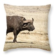 Covered In Mud Throw Pillow
