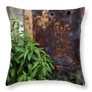 Covered In Rust Throw Pillow