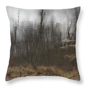 Coverstory Throw Pillow