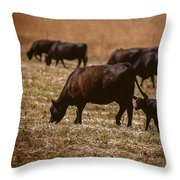 Cow And Calf Grazing Throw Pillow